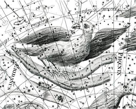 Fénix z atlasu J. Bodeho