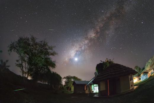 Fireflies in Uganda