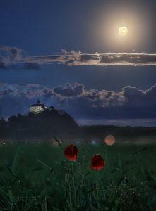 Měsíc, hrad a vlčí mák